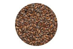 Солод  шоколадный Chocolate malt  EBC 800-1000 (Viking Malt) 1 кг