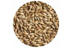 Солод ячменный светлый Pilsner malt ЕВС 2,8-4,5 (Курский солод) 1кг